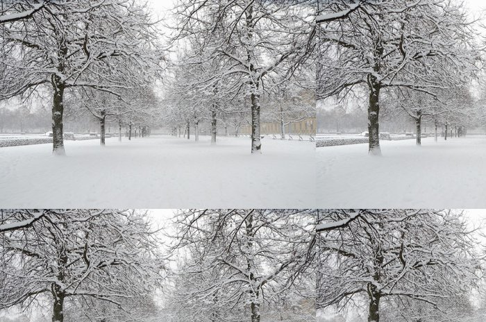 Tapeta Pixerstick Английский сад зимой - Témata