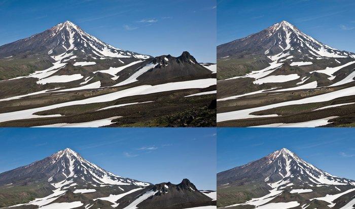 Tapeta Pixerstick Вид на гору Верблюд и вулкан Корякский (Камчатка) - Hory