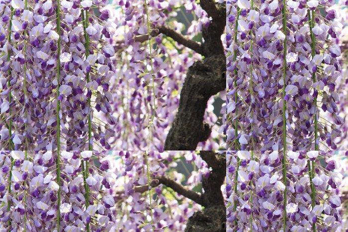Tapeta Pixerstick 藤 - Květiny