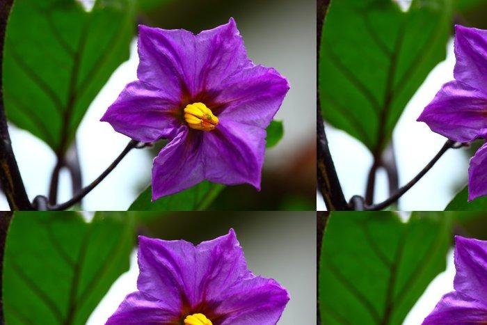 Vinylová Tapeta ナ ス の 花 - Květiny