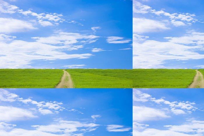 Tapeta Pixerstick 草原 と 道 と 青 空 - Venkov