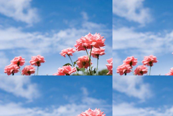 Vinylová Tapeta ピ ン ク の バ ラ の 花 と 青 空 - Květiny