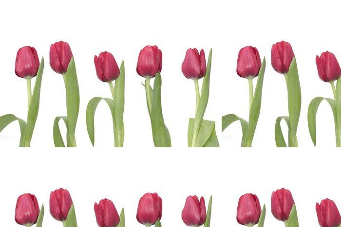 Tapeta Pixerstick 5 červené tulipány - Květiny
