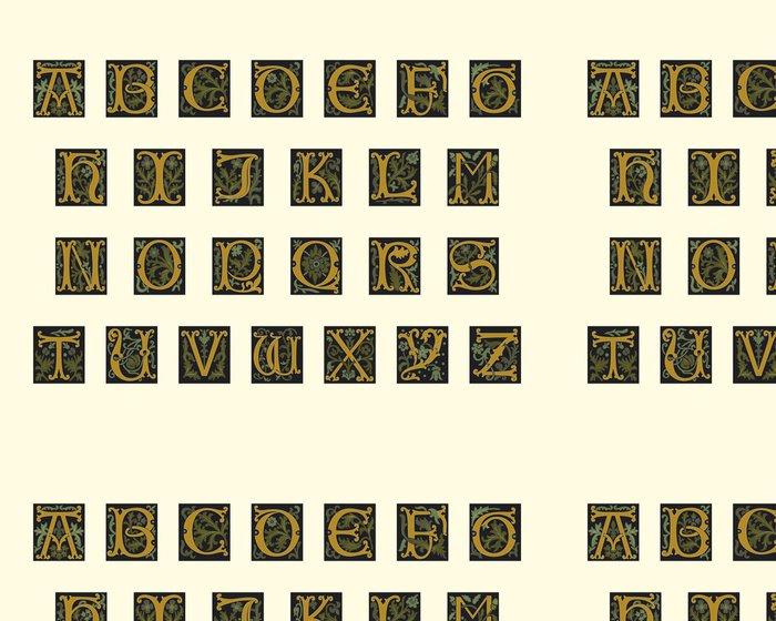 Vinylová Tapeta Abeceda počátku 16. století - Témata