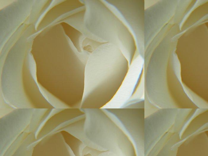 Tapeta Pixerstick Abstraktní bílá růže - Témata