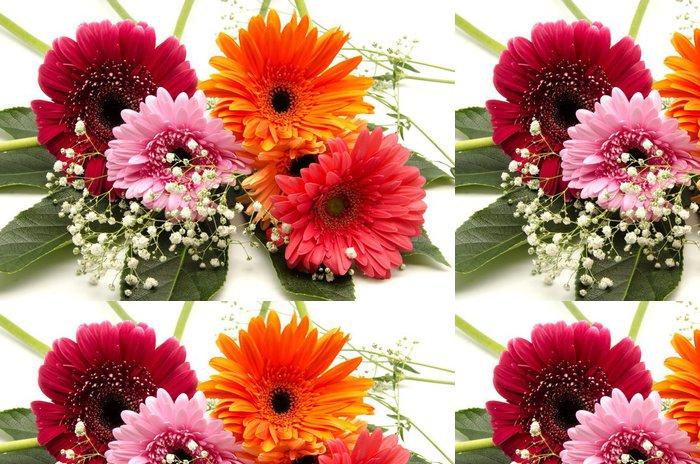 Tapeta Pixerstick African Daisy - Květiny