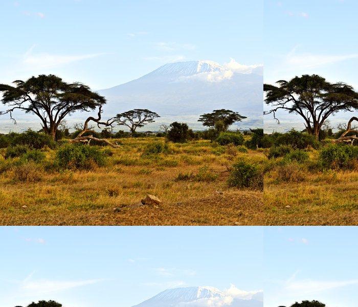 Tapeta Pixerstick Africká savana krajina - Témata