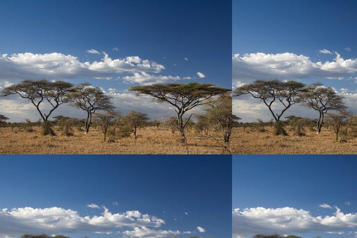 Vinylová Tapeta Afrika krajiny 023 Serengeti - Příroda a divočina
