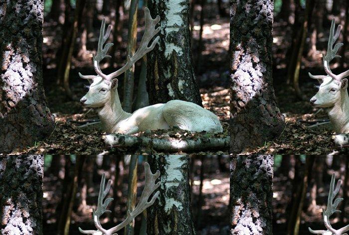 Tapeta Pixerstick Albín daněk v lese - Témata
