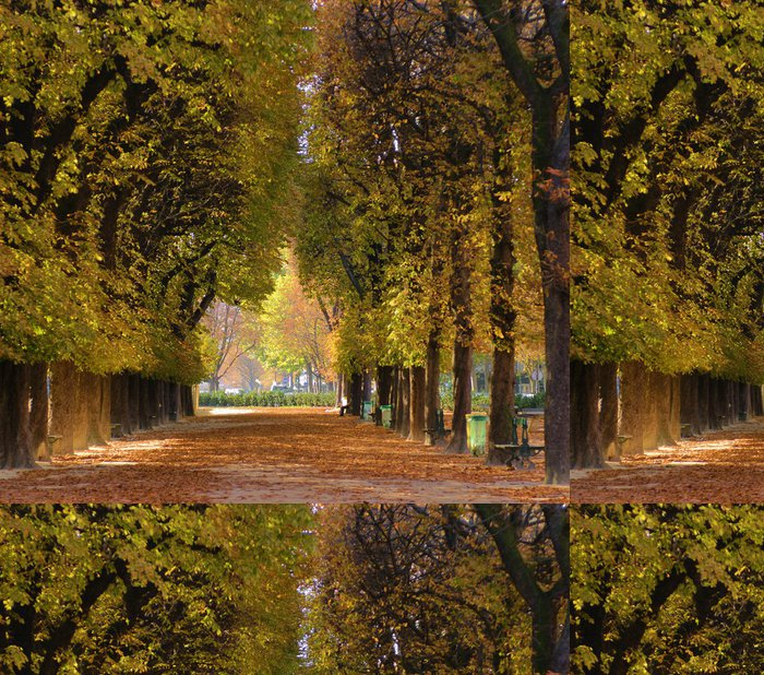 Tapeta Pixerstick Alej stromů na podzim - Témata