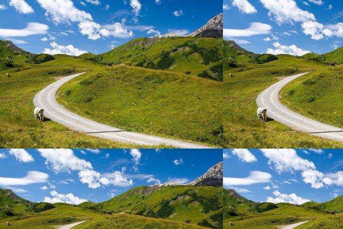 Tapeta Pixerstick Alpské krajiny a horská cesta - Evropa