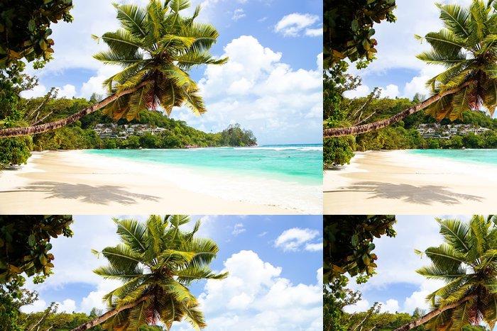 Vinylová Tapeta Anse Gouvernement v Mahe, Seychelles - Prázdniny