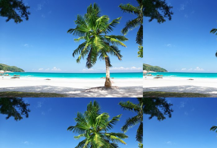 Tapeta Pixerstick Anse Lazio Beach Ostrov Praslin, Seychely - Palmy