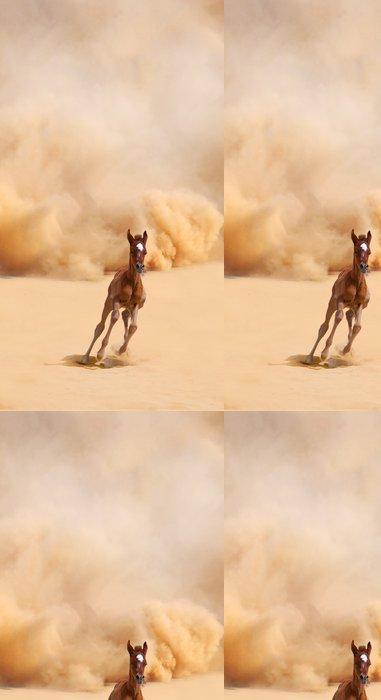 Tapeta Pixerstick Arabské hříbě běží ven z bouře Desert - Pouště
