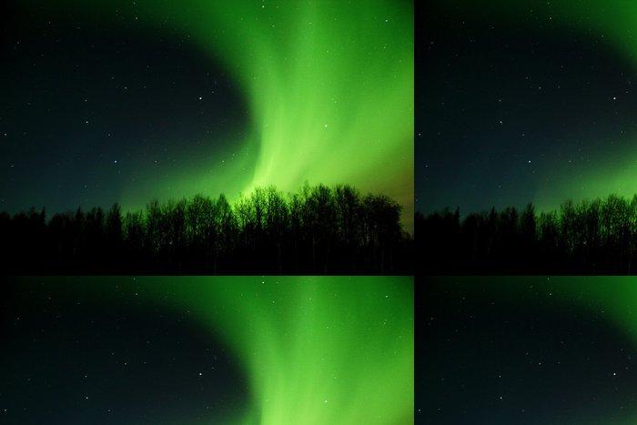Tapeta Pixerstick Aurora kolejových zpoza stromů - Přírodní krásy