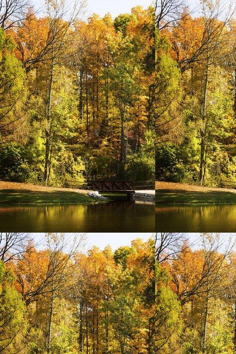 Tapeta Pixerstick Autumn_trees - Roční období