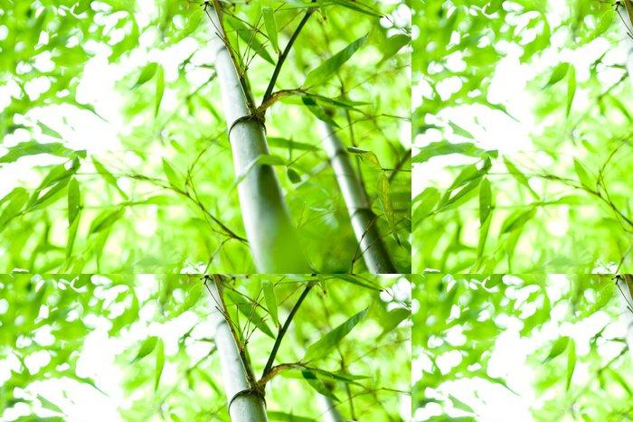 Tapeta Pixerstick Bambusový les - Témata