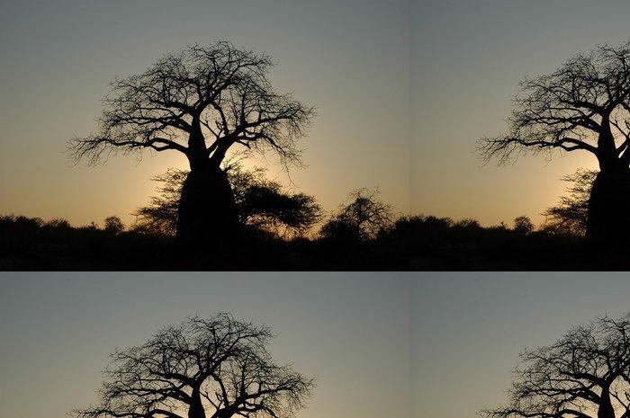 Tapeta Pixerstick Baobab je contraluz - Témata