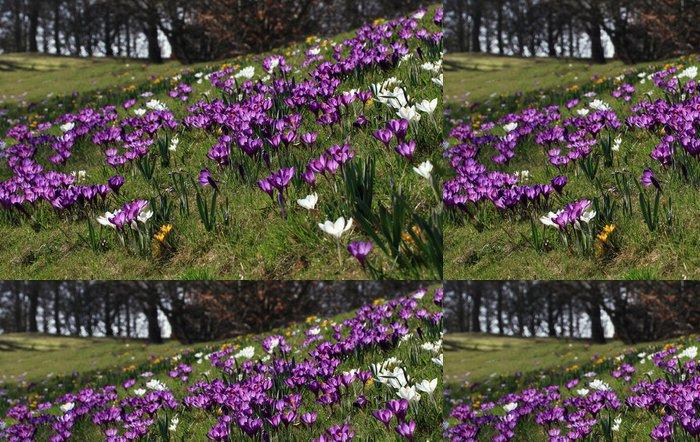 Tapeta Pixerstick Barevné jaro - Roční období