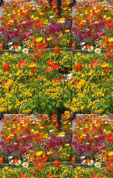 Tapeta Pixerstick Barevné květinové záhony s barevnými máky - Domov a zahrada