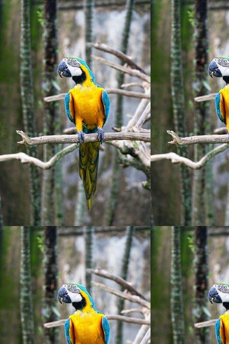 Tapeta Pixerstick Barevné Parrot sedí na větvi - Ptáci