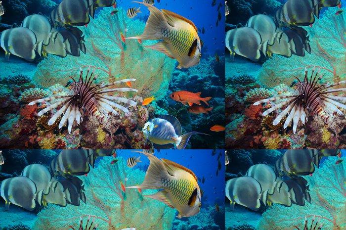 Vinylová Tapeta Barevné podvodní útes s korály a houby - Vodní a mořský život