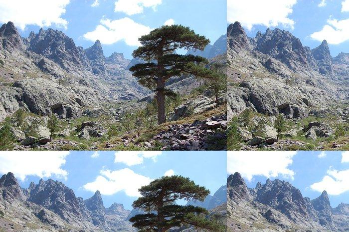Tapeta Pixerstick Baumgrenze - Příroda a divočina