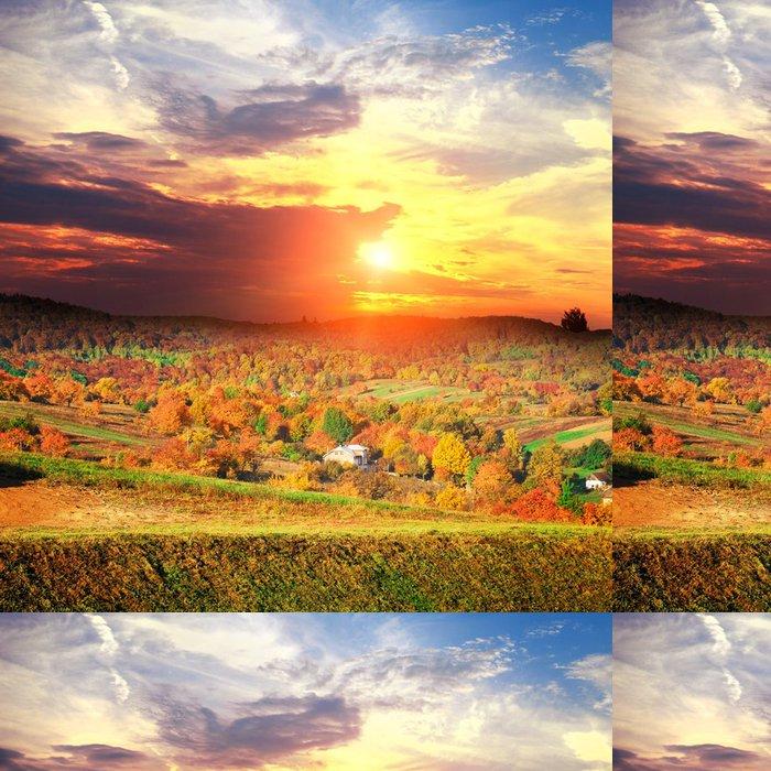 Tapeta Pixerstick Bautiful žluté podzimní krajina s lesem - Pozadí