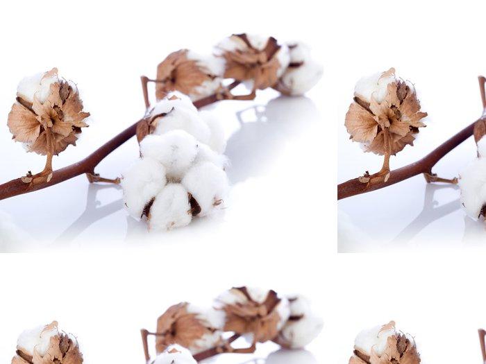 Tapeta Pixerstick Bavlna květina přes větev - Rostliny
