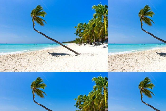Tapeta Pixerstick Beach a Palm tree - Voda