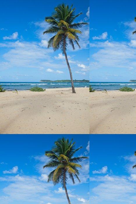 Tapeta Pixerstick Beach kaple v Guadeloupe - Voda