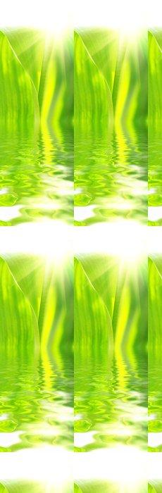 Tapeta Pixerstick Beautyful zelené listy - Rostliny