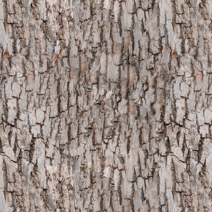 Vinylová Tapeta Bezešvé kůra stromu - Struktury