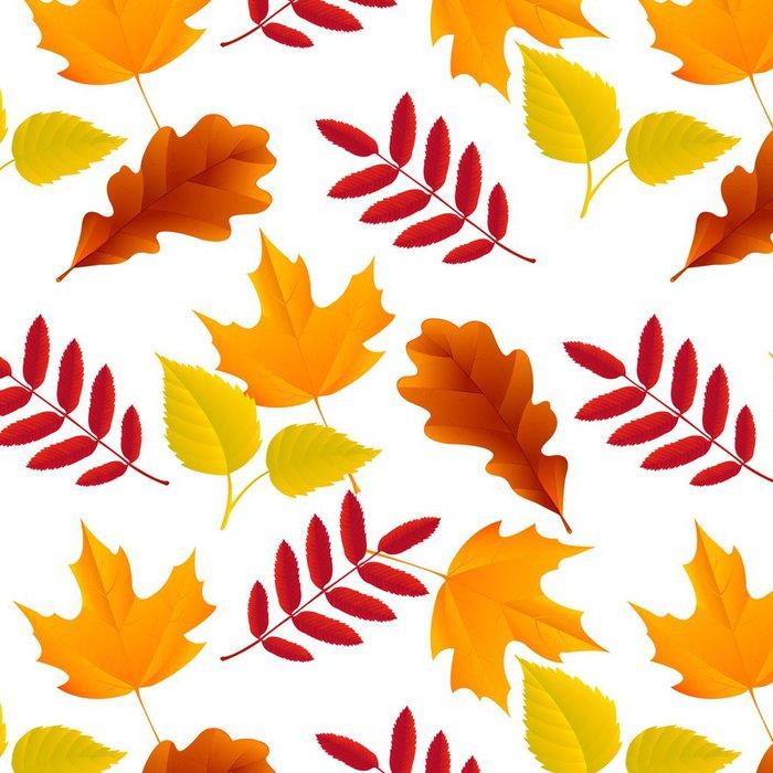 Vinylová Tapeta Bezešvé podzimní listí vzor - Značky a symboly