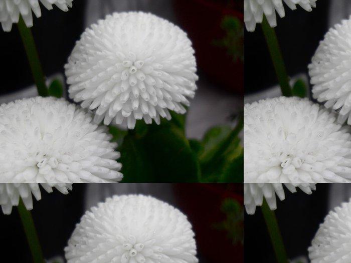 Tapeta Pixerstick Biely - Květiny