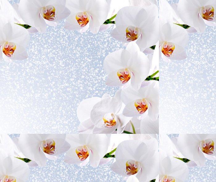 Tapeta Pixerstick Bílá orchidej - Květiny