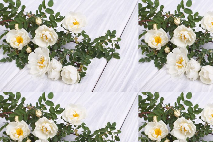 Tapeta Pixerstick Bílá růže lezení na dřevěný stůl - Květiny