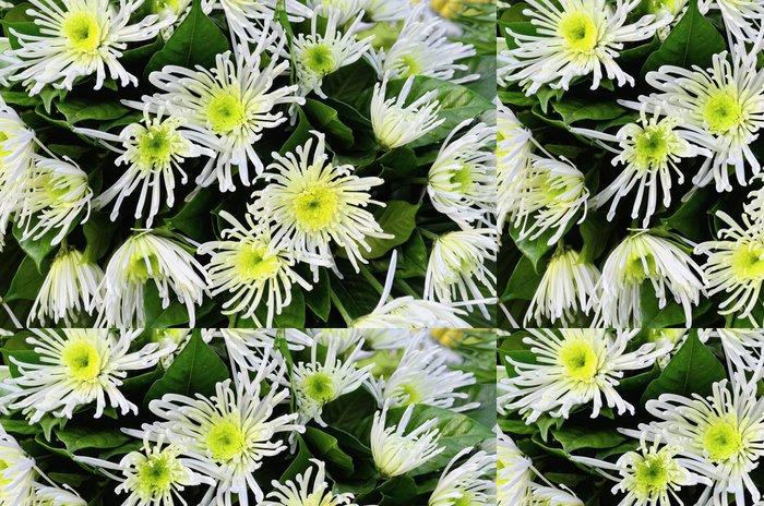 Tapeta Pixerstick Bílé květy - Květiny