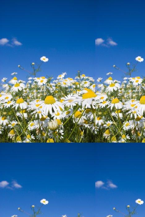 Tapeta Pixerstick Bláznivý Daisy - Květiny