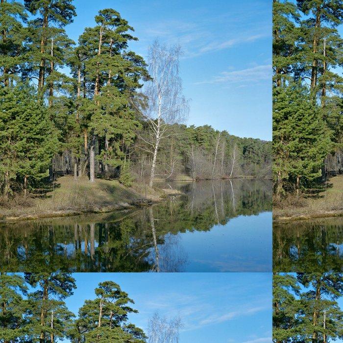 Tapeta Pixerstick Borovice a břízy na břehu jezera - Roční období