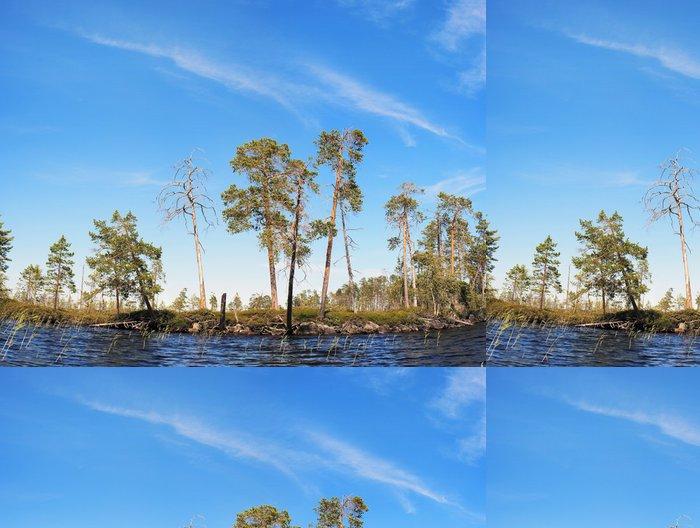 Tapeta Pixerstick Borovice na severním pobřeží jezera - Příroda a divočina