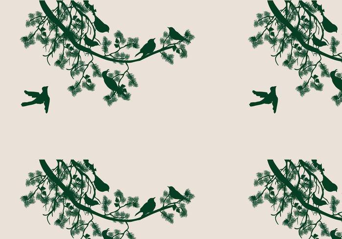 Vinylová Tapeta Borovice větev a ptáci - Stromy
