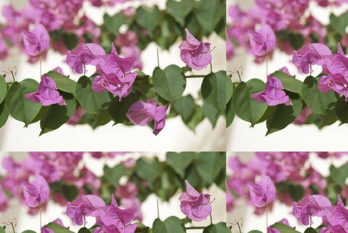 Vinylová Tapeta Bougainvillea - Květiny