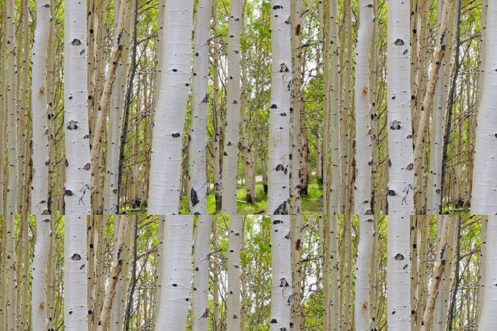 Tapeta Pixerstick Bříza štěká, Dixie Nat Forest, scénická postranní cesta 12, Utah - Témata