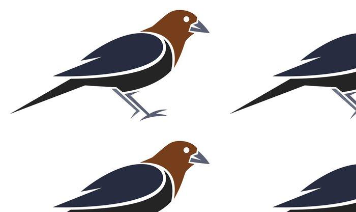 Tapeta Pixerstick Brown Headed Cowbird - Ptáci