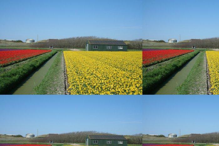 Tapeta Pixerstick Bulbfields v Holandsku - Květiny