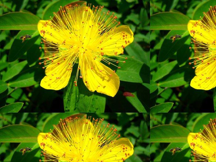 Tapeta Pixerstick Bzučení včel - Květiny
