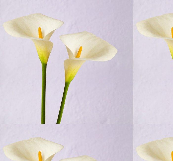 Tapeta Pixerstick Calas - Květiny