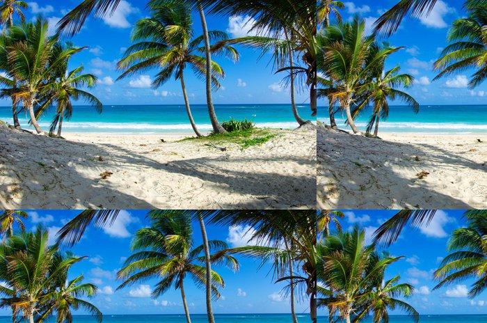 Tapeta Pixerstick Caribbean beach - Voda