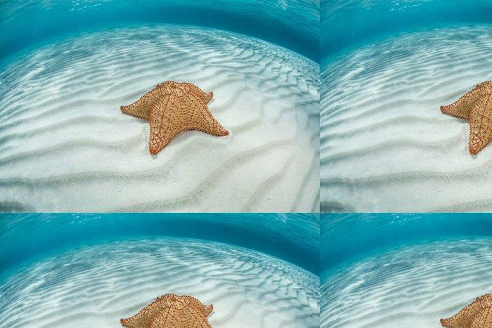 Tapeta Pixerstick Caribbean Hvězdice - Vodní a mořský život